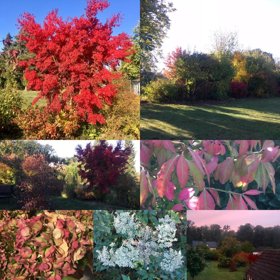Herbst1018